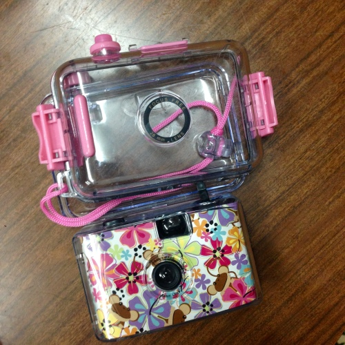 Our dependable and sturdy underwater camera! Woohoo!! Thank you MyStyleRack!